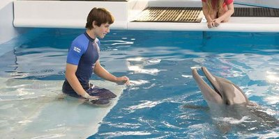 Story of Hope, Constant Change Unfolds in Dolphin Tale 2