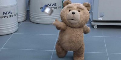 Seth MacFarlane Returns to Direct, Voice for Ted in Sequel